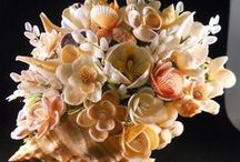 SEASHELL Flowers & Bouquets / by Linda