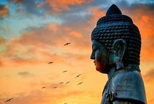 buddha quotes~