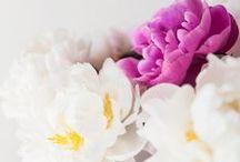 Inspiration • Flowers