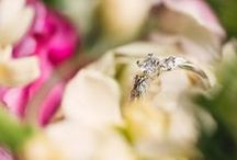 Bridal - Secret Garden / Capture your future brides love for nature with our organically inspired engagement rings. The adorable Secret Garden range features 5 new floral designs: Royal Oak, Cherry Blossom, Bellis, Foliage and The Braided ring.   http://www.arabellebrusan.com/collections/secret-garden