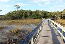 Everglades National Park / Are you planning a trip to Everglades National Park? Take Chimani with you! We develop 100% free mobile app travel guides for national parks and other outdoor destinations. No cell connection required! Download our apps for iOS and Android at http://www.chimani.com or in the App Store or on Google Play