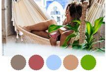 BH • Color Palette