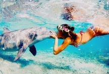Summer / by Hanna Obaidat