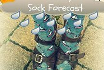 The Daily Sock Forecast / The socks have the answers