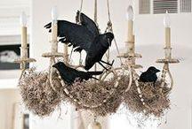 Raven Halloween decor / by Romantic Domestic