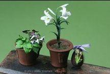 Mini's _ Garden Oriented / by Jenn Lilly