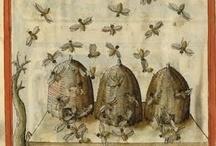 Bees a Buzzin'