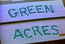 Green Acres is the place to be... / by The Primitive Hutch
