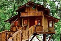Way UP High / Tree Houses and Such
