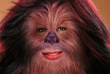 """sexy"" chewbaccas / of all the things to ""sexualize,"" chewbacca is at the bottom of my list. it would appear that other don't share my view. this week's pinterest board ""celebrates"" carnal passion, i guess. presenting, sexy chewbaccas. as you were."
