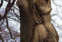 Wood / Art in wood