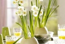 Easter Decorations / Ideas to make your house beautiful or just have fun with the kids this Easter