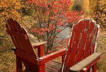 Autumn Landscape / L'été se termine... Vive l'Automne !