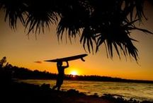 Surfing / Riding a surfboard across the face of a breaking wave was once the preserve of ancient Polynesian islanders, but in the twentieth century it became something enjoyed by millions of people the world over.