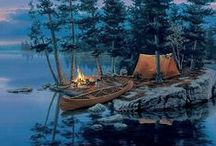 Camp, Canoe, Hike, Boat & Dipping / by dawn rogers