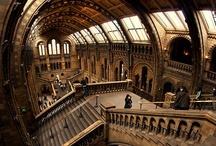 interior.architecture