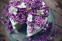 Lilacs, Lavender .... / The beauty of lavender, lilacs and inspiration