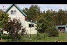 Gott's Island, Maine / Heaven 04653