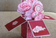 Card In A Box / stampin up- card in a box projects