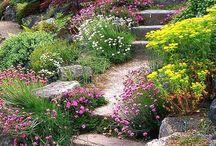 Haveinspiration / Indretning af have, planter, krukker, terrasser...