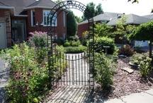 Lavender Cottage Gardens
