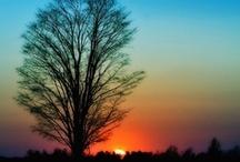 Sky :: Sunset