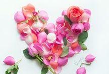 Valentine's Day ♥ Saint-Valentin