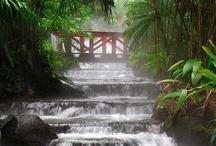 Costa Rica Travelogue by Rich Cocovich