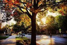 It's Fall at #UNL!  / by University of Nebraska–Lincoln