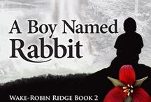 A Boy Named Rabbit: WRR #2 / Inspiration Board for the sequel to Wake-Robin Ridge. The story of a little boy raised isolated from civilization who finds himself alone, and must make the journey of a lifetime out of the wilderness. This is a Work In Progress, with a possible publication date of November/December, 2014. Join me on Bookin' It: http://marciameara.wordpress.com/