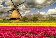 netherlands ✈️