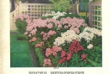 Yards and Gardens : A Catalog History