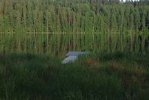 Sauna cottage Sammalkasa / Views both out and inside, beautiful and peaceful nature by the pond Tyrynlampi