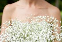 Weddings / by Tori Sorensen