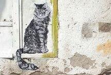 street art / by Electre Lone