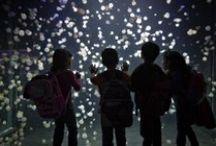 Jellyfish kingdom / by Electre Lone