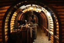 Grande Miniera di Serbariu / Il sito minerario, attivo dal 1937 al 1964,  ha caratterizzato l'economia del Sulcis e rappresentato tra gli anni '30 e '50 una delle più importanti risorse energetiche d'Italia, essendo la più grande miniera di carbone italiana. Il complesso è stato recuperato e ristrutturato a fini museali e didattici ed è ora regolarmente aperto al pubblico. Il Museo del Carbone include: la Lampisteria, la Sala Argani, la Galleria sotterranea.
