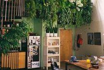 Gardens & Green