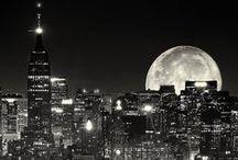 NEW YORK DREAMING / NEW YORK