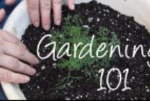Grădinarit