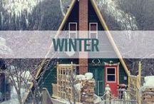 Libelle Winter