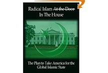 America Plundered/EPI Books / These are some of the publications by this author.