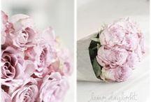 Vaaleanpunainen <3