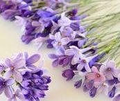 HandMade: Цветы