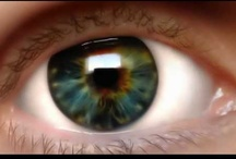 Contact Lenses That Turn Heads / A beautiful array of contact lenses which each have a particular striking element to them. Check more out at http://www.colormecontacts.com/