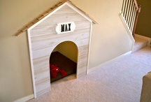 Pet friendly homes