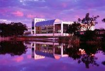 The Beauty of a Library / by Eckerd College Library