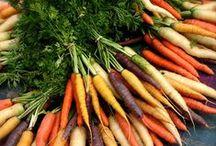 Fűszerek & Konyhakertek - Herbs & Kitchen Gardens