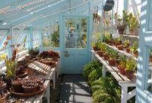 Üvegházak és fészerek - Greenhouses and Sheds