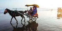 Pantai Parangtritis / Parangtritis Beach / Bisa dibilang, Pantai Parangtritis merupakan pantai di Yogyakarta yang paling nge-hits sejak dulu hingga kini. Di Parangtritis kamu bisa merajut cerita romantis, menyaksikan senja nan eksotis, hingga mendengarkan legenda serta kisah mistis.
